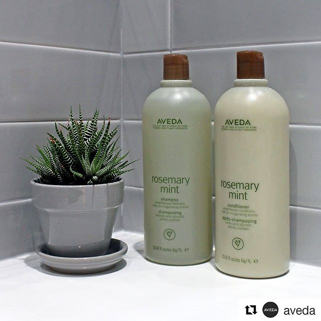 Some say the invigorating zing of #RosemaryMint is better than caffeine in the morning. OK, it may not replace your AM espresso, but its aroma of rosemary, peppermint and spearmint naturally energizes your senses.___________________________#instahair #instabeauty #atthesalon #salonlife #hair #hairspiration #hairsalon #haircolor #hairstyles #hairstyling #haircut #carlsbad #sandiego #sandiegohair #carlsbadhair #aveda #avedacolor #avedaproducts #avedaartist #smellslikeaveda #crueltyfree #botanicals #knowwhatyouremadeof #plazapaseoreal #pumpkincontest #repost @aveda(Photo: @oharainteriorsofficial)